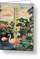 Florida Flamingo's Greeting Card