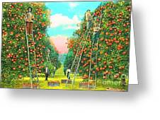 Florida Orange Pickers 1920 Greeting Card by Annette Allman