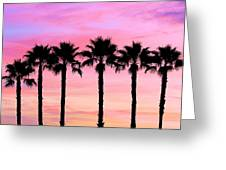 Florida Palm Trees Greeting Card