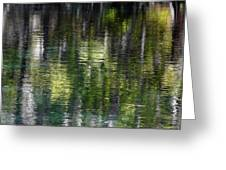 Florida Silver Springs River Greeting Card