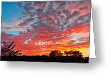 Florida Spring Sunset Greeting Card