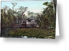 Florida Steamboat, C1902 Greeting Card