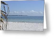 Florida Sunshine Greeting Card