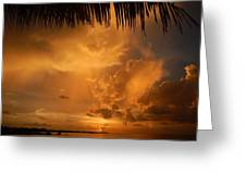 Florida Sunshower Sunset Greeting Card