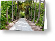 Florida Walkway Greeting Card