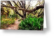 Florida Woods Greeting Card