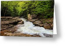 Flow Of Forest Zen Greeting Card