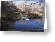 Flow V7 Greeting Card