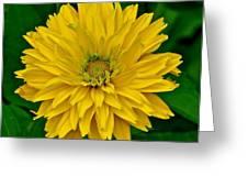 Flower 111 Greeting Card