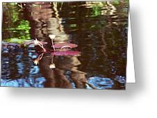 Flower And Lily Pad Greeting Card