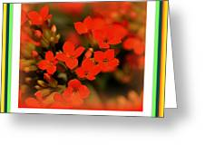 Flower And Time Quote Greeting Card