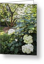 Flower And Tree At Msu Greeting Card