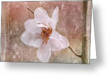 Flower Art - Nature Reminds Us Greeting Card