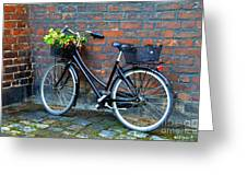 Flower Basket Bicycle Greeting Card