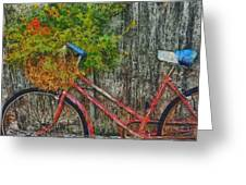 Flower Basket On A Bike Greeting Card