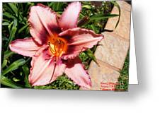 Flower Beauty  1 Greeting Card