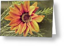 Flower Beauty I Greeting Card