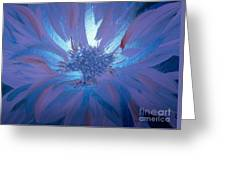 Flower Blue Greeting Card
