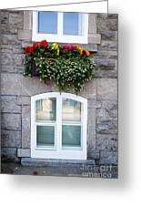 Flower Box Old Quebec City Greeting Card