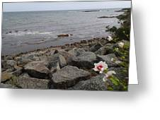 Flower By The Sea Greeting Card