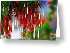 Flower Chandelier Greeting Card