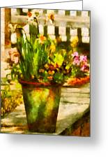 Flower - Daffodil - A Pot Of Daffodil's Greeting Card by Mike Savad