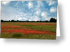 Flower Fields Forever Greeting Card