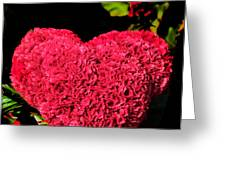 Flower For The Heart Greeting Card