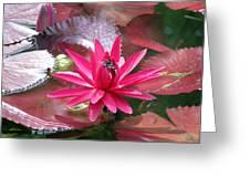 Flower Garden 66 Greeting Card