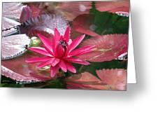 Flower Garden 67 Greeting Card