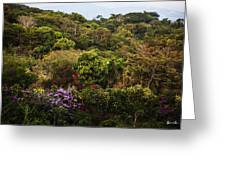 Flower Garden On A Hill Greeting Card