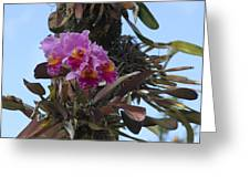 Flower In A Tree Greeting Card