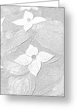 Flower In Pencil Greeting Card