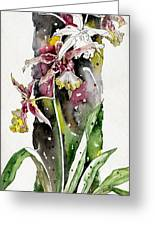 Flower Orchid 03 Elena Yakubovich Greeting Card