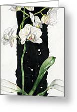 Flower Orchid 05 Elena Yakubovich Greeting Card