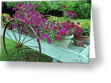 Flower Pot 2 Greeting Card