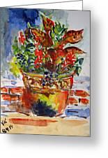 Flower Pot Greeting Card by Vladimir Kezerashvili