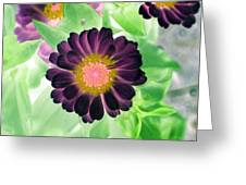 Flower Power 1435 Greeting Card