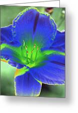 Flower Power 1443 Greeting Card