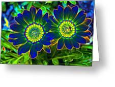 Flower Power 1446 Greeting Card