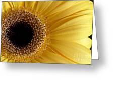 Flower Power All Profits Go To Hospice Of The Calumet Area Greeting Card