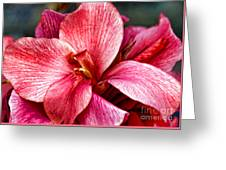 Flower Power In Pink By Diana Sainz Greeting Card