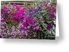 Flower Riot Greeting Card