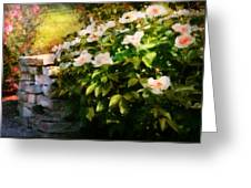 Flower - Rose - By A Wall  Greeting Card by Mike Savad