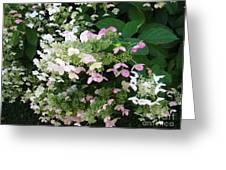 Flower Spray Greeting Card