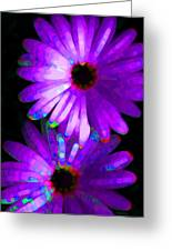 Flower Study 6 - Vibrant Purple By Sharon Cummings Greeting Card