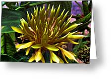 Flower - Sultry Dahlia - Luther Fine Art Greeting Card