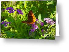 Flower To Flower Greeting Card