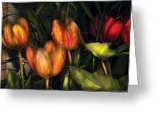 Flower - Tulip -  Orange Irene And Red  Greeting Card