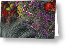 Flower Wall At The Falls Selective Color Greeting Card